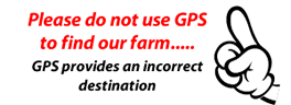 gps does not work to find us
